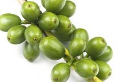 cafe-verde-e1421417755171.jpg